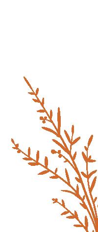plant_v